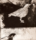 Printmaking - bird