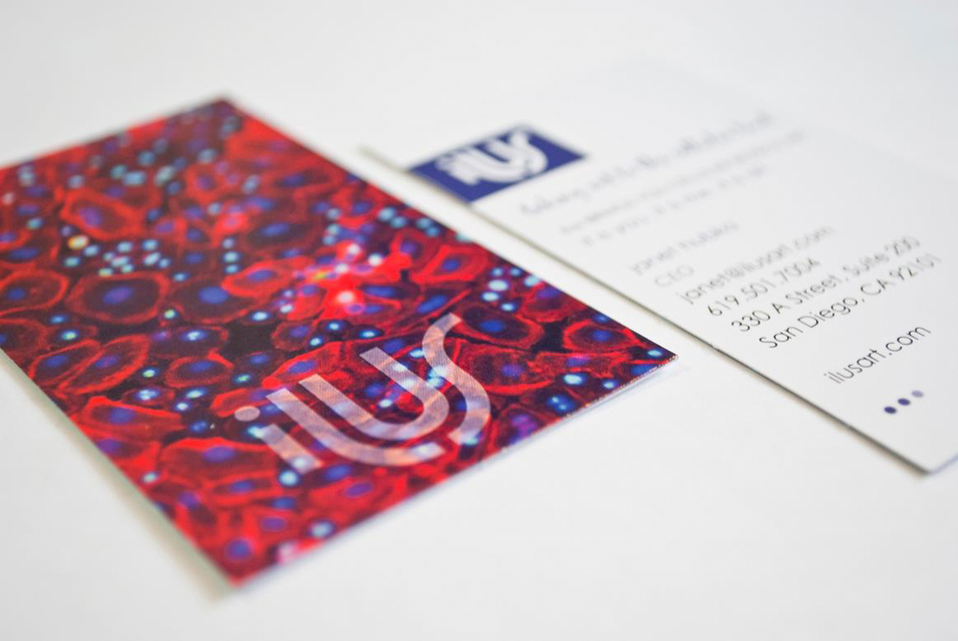 ilusart.com business card