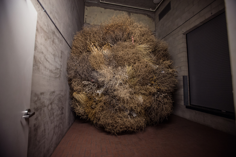 A group of tumbleweeds on a loading dock