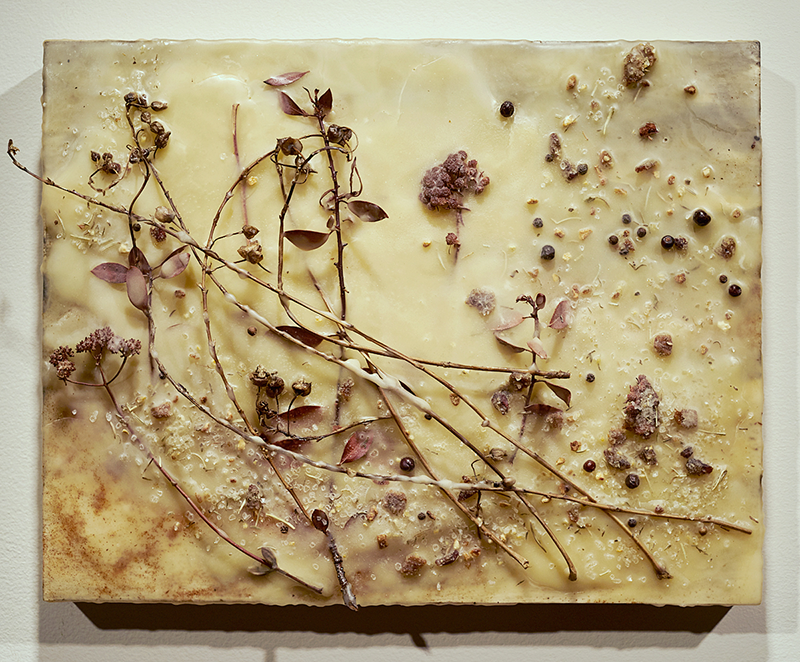 Stems and flowers set in encaustic on a panel